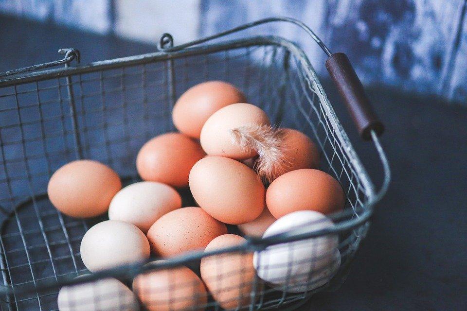 A tojásfehérje jótékony hatásai - Fit Body Blog